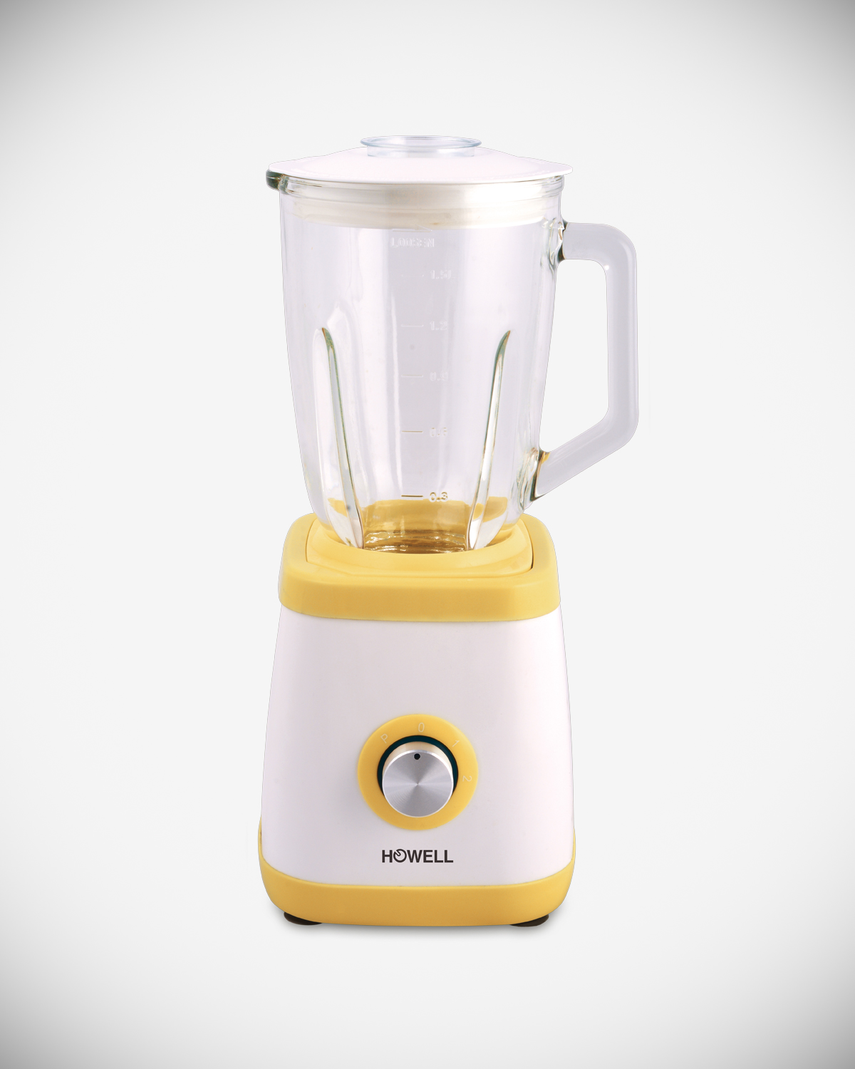 Professional 600 Watt blender with glass jar HO.FM6011