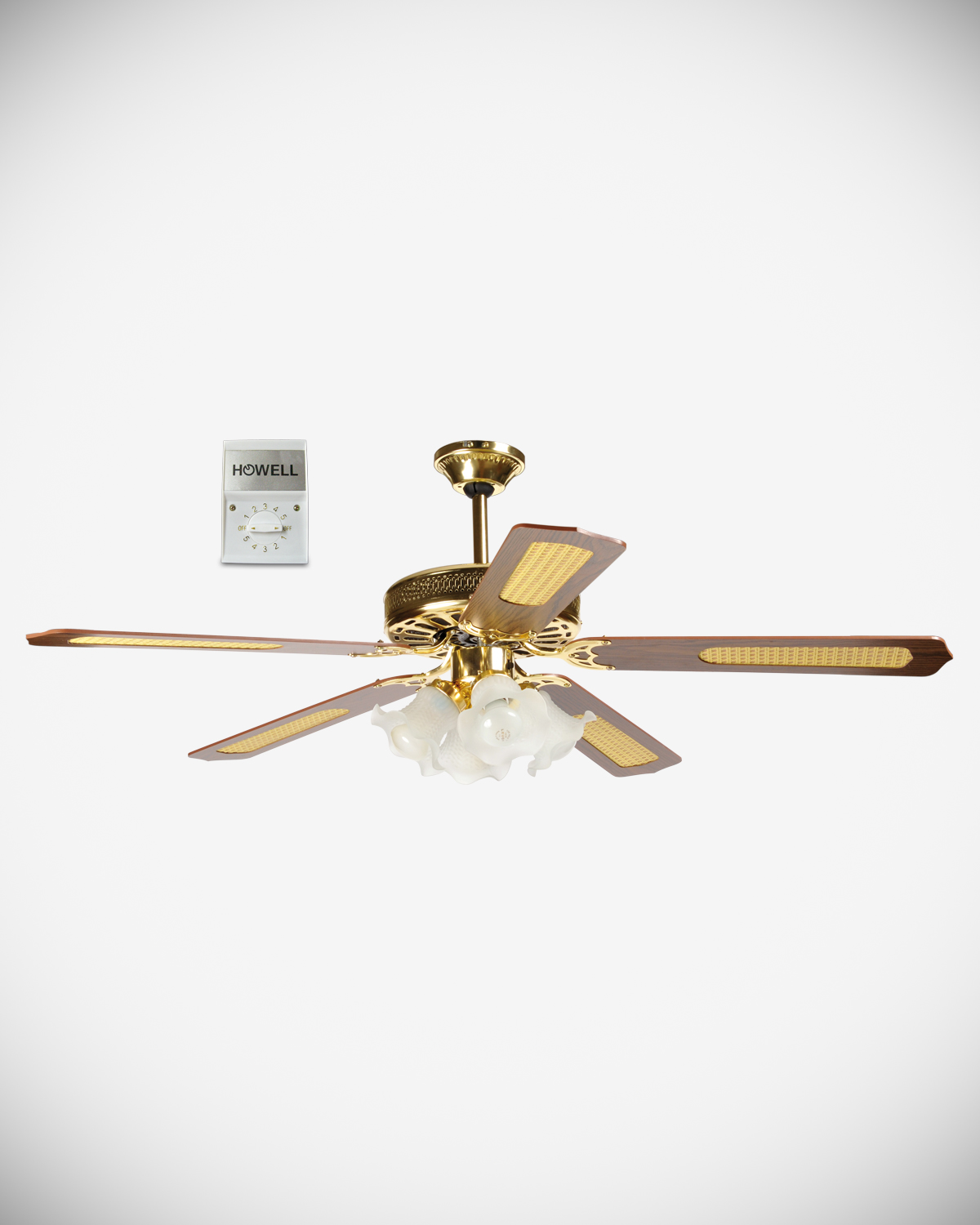 Ceiling fan with wall control HO.VSL14044