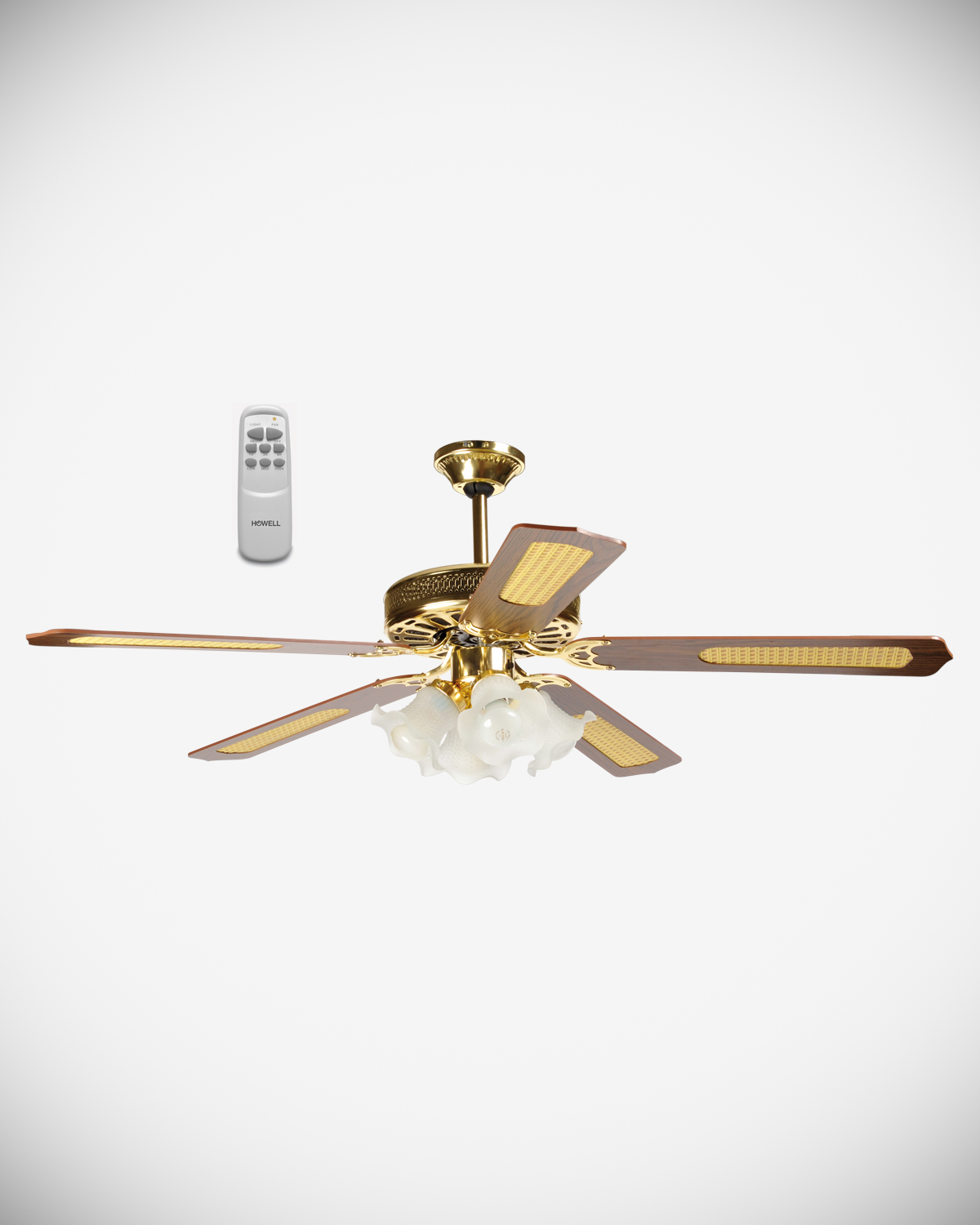 Ceiling fan with remote control HO.VSR14045